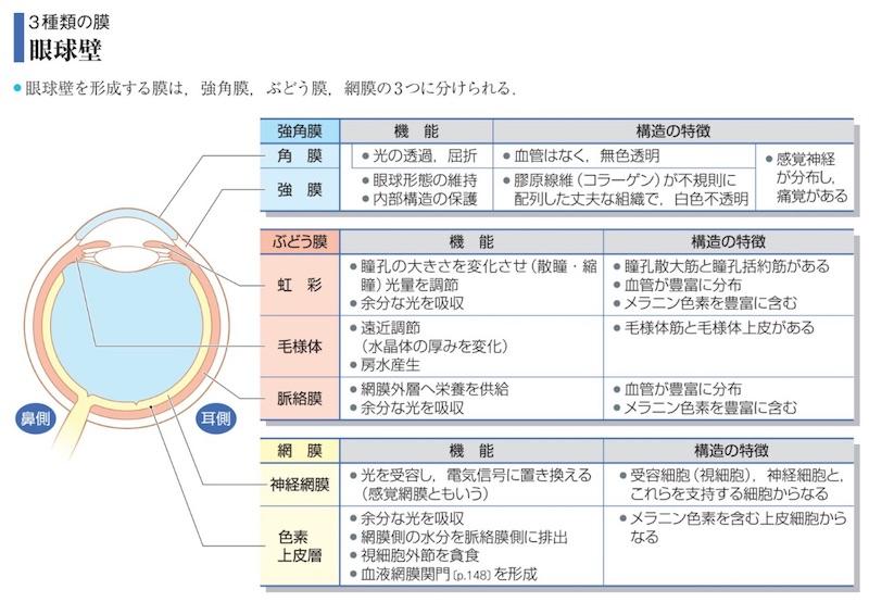 眼、網膜、アズール、AZOOR<相模原 漢方 鍼灸 接骨 タナココ>